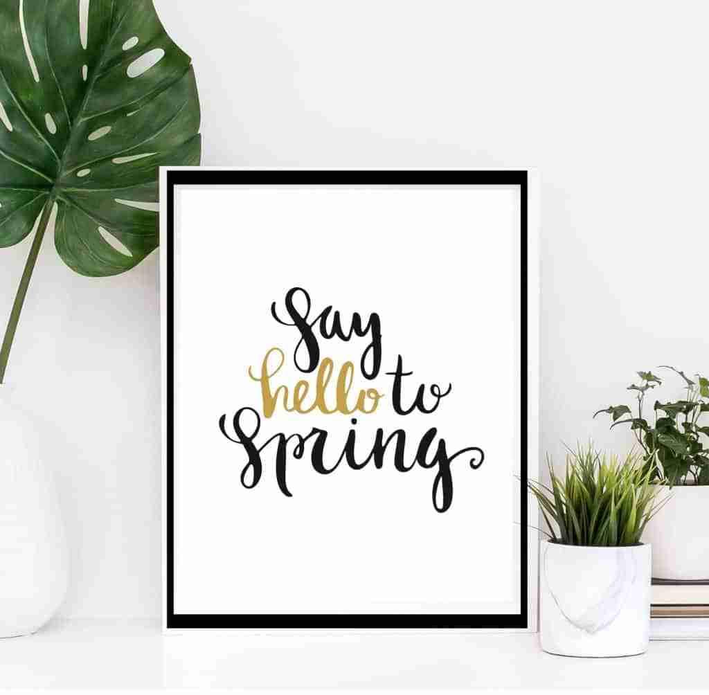 Îmbunătățiri pentru primăvară