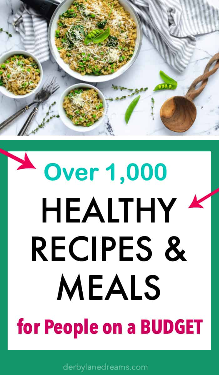 healthy meals planning healthy recipes on a budget for families for cheap
