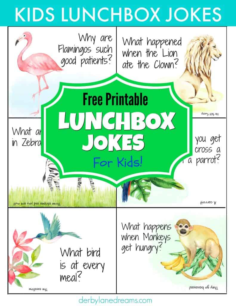 page of kids funny lunchbox jokes to read while eating lunch for back-to-school