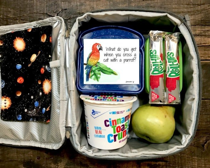 School Kid's Lunchbox Jokes with snacks