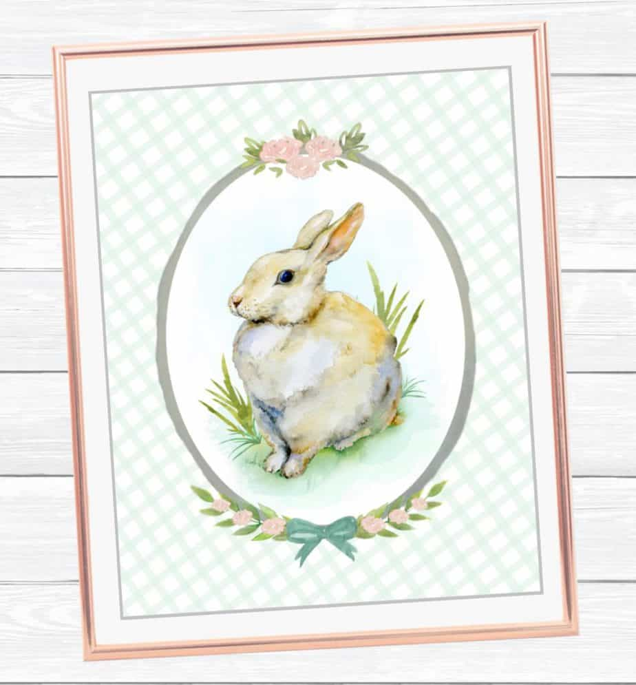 watercolor bunny for spring
